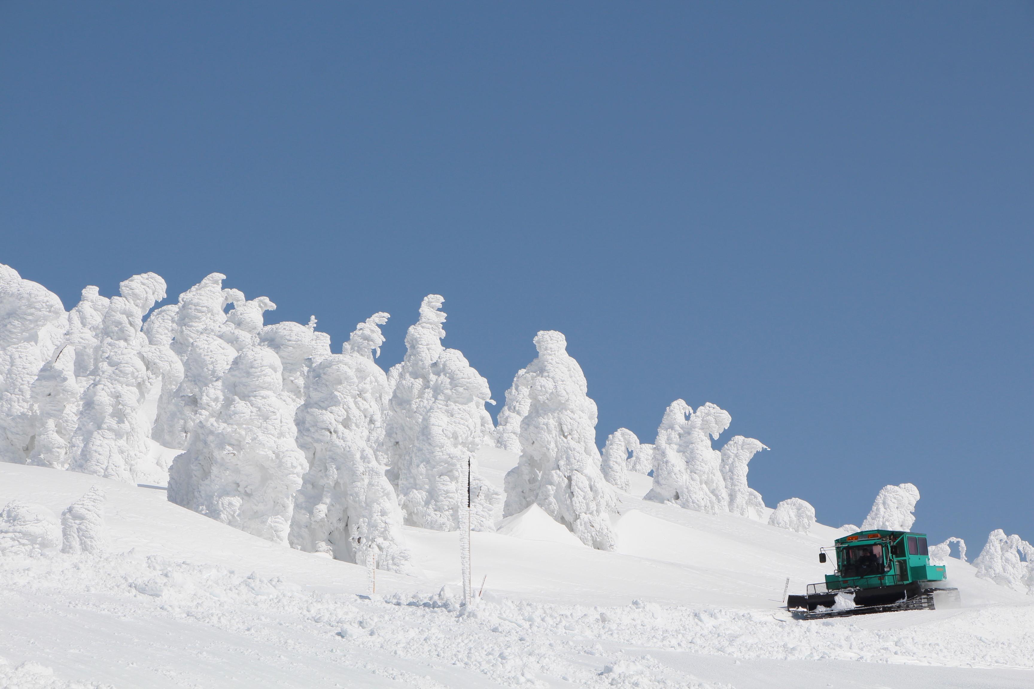 樹氷 ツアー 蔵王